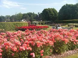 Anne's Park & Rose Gardens