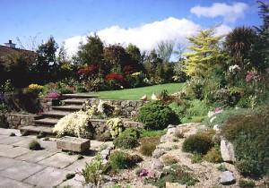 Carmel Duignans Garden