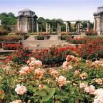 Parques y Jardines en Dublin
