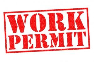 Critical Skills Employment Permit en Irlanda