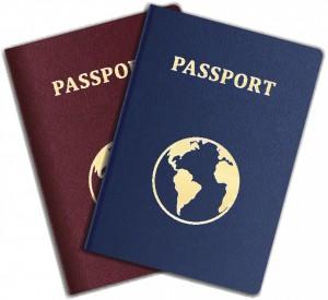 Pasaporte de emergencia