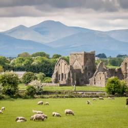 10 experiencias que no te puedes perder en Irlanda
