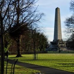 Parques en Irlanda: los pulmones verdes del mundo